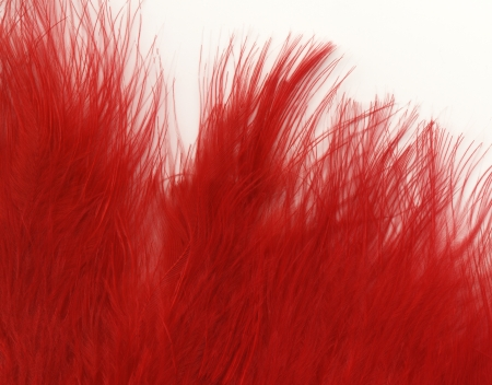 Red hairy fur texture  photo