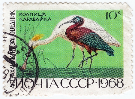 USSR - CIRCA 1968 : stamp printed in USSR show bird heron, circa 1968 Stock Photo - 16134639