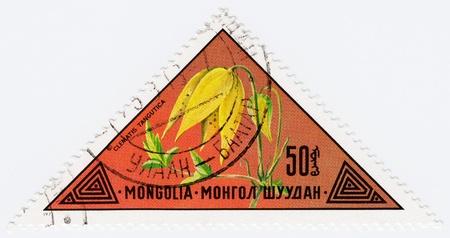 MONGOLIA - CIRCA 1973 : stamp printed in Mongolia shows a flower Clematis Tangutica, circa 1973 Stock Photo - 16239629