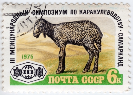 USSR - CIRCA 1975 : Stamp printed in USSR shows Karakul Lamb devoted to 3rd International Symposium on Astrakhan production, Samarkand, circa 1975