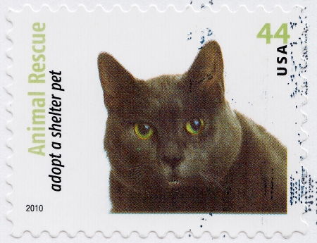 USA - CIRCA 2010 : stamp printed in USA shows Animal Rescue adopt a shelter pet, circa 2010