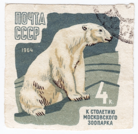 USSR - CIRCA 1964 : Stamp printed in USSR shows Polar Bear from the series 100th anniv. of the Moscow zoo, circa 1964 Stock Photo - 16391952