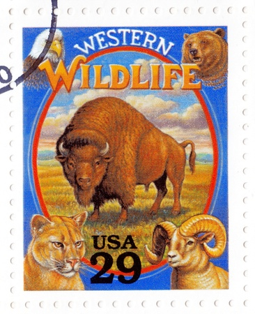 USA - CIRCA 1994  Stamp printed in the USA shows Western Wildlife in the American Old West, circa 1994