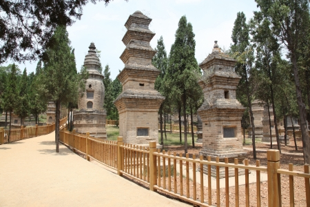 eminent: The Pagoda Forest at the Temple in Shao Lin, located in XiAn China.Its a concentration of tomb pagodas for eminent monks and bonzes of the temple Stock Photo