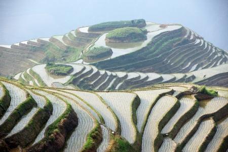 guilin: Longji rice terraces, Guangxi province, China Stock Photo