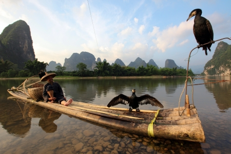 YANGSHUO - JUNE 18  Chinese Chinese man fishing with cormorants birds in Yangshuo, Guangxi region, traditional fishing use trained cormorants to fish, June 18, 2012  Stock Photo - 19348880