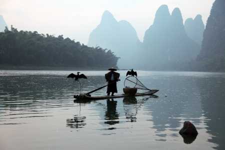 Chinese man fishing with cormorants birds in Yangshuo, Guangxi region, traditional fishing use trained cormorants to fish, China