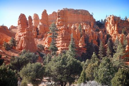 hoodoos: Bryce Canyon Hoodoos, Utah, USA