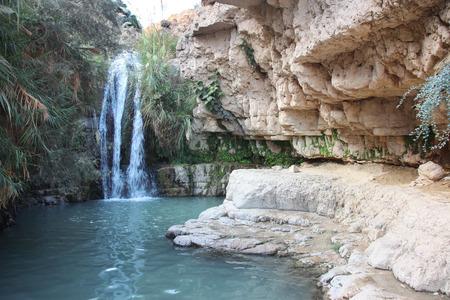 Waterval in nationaal park Ein Gedi dichtbij het Dode Overzees in Israël Stockfoto