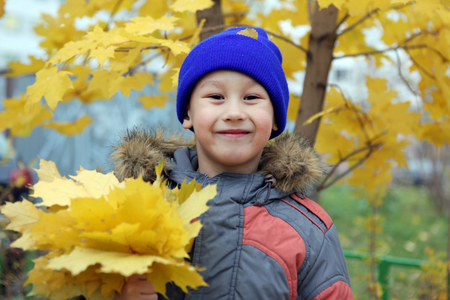 boy at maple leaf in falling photo