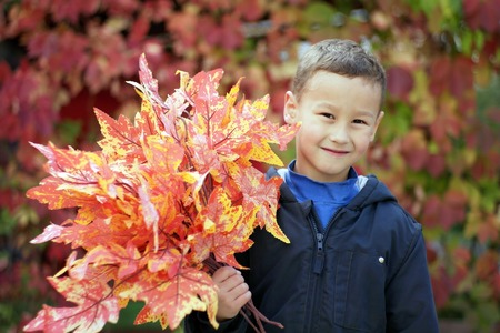 Young boy with leaves in the park photo