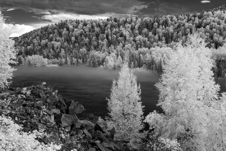 katun: Fog at Katun river, Altai State Natural Biospheric Reserve, Russia.