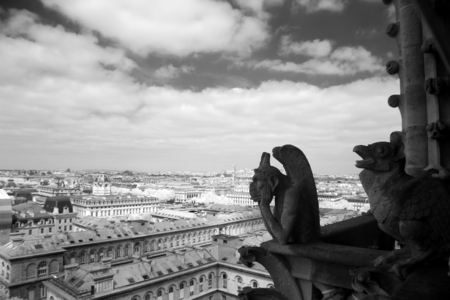 gargouille: Notre Dame de Paris, Gargouille plus célèbre de tous les chimères, donnant sur les toits de Paris