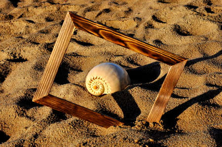 Wooden photo frame and shell on the sand on a Sunny day