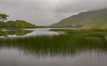 lough: Fog on lake Pollacapall Lough