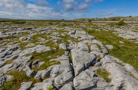 burren: The Burren