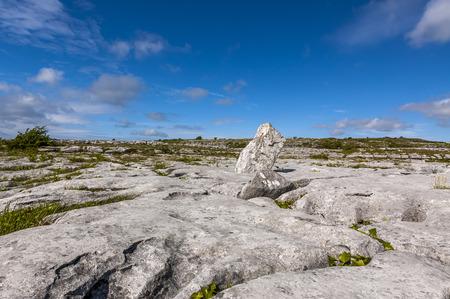 burren: Rocks in the Burren
