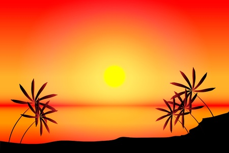 beach sunset: Beach with sea, sun and palm tree on sunset, illustration