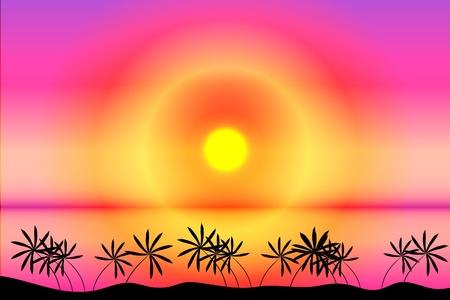 Sunset. Tropical beach. Palms Stock Vector - 9917500
