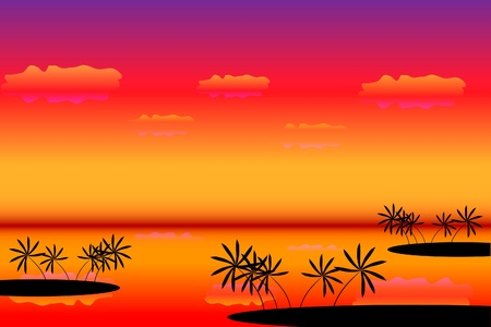 Sunset. Tropical beach. Palms. Vector art illustration Stock Vector - 9917482