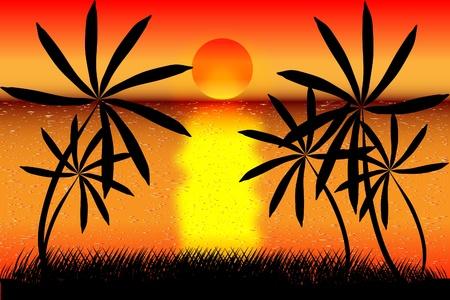 Tropisch strand zonsondergang