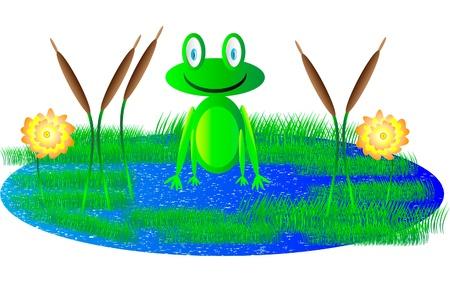 Cute frog sitting in swamp Vector