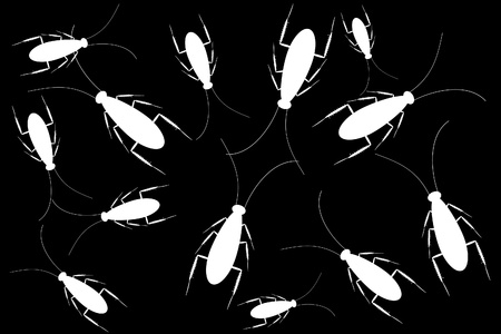 White cockroaches isolated on black background Stock Vector - 9917808