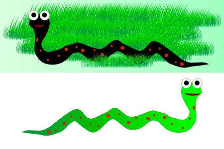 rattle snake: illustration of a  snake in grass and snake on white background Illustration
