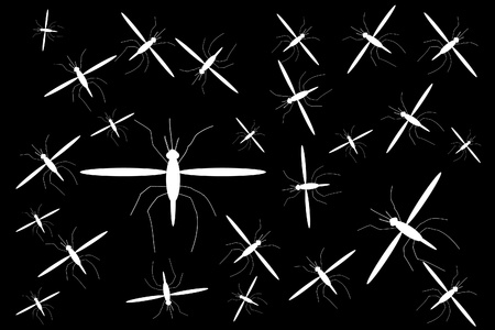 Mosquitoes on black background, illustration Stock Vector - 9917837