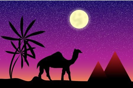 Night in Egypt with palms, pyramids and camel Stock Vector - 9917884