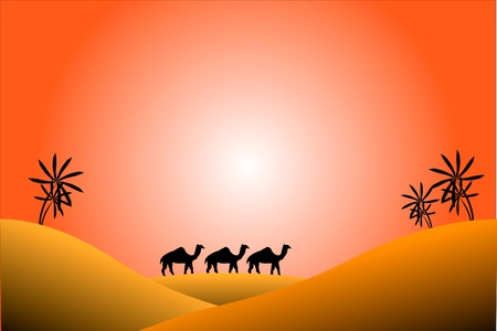 sand asia: Sunrise in desert with palms and camels