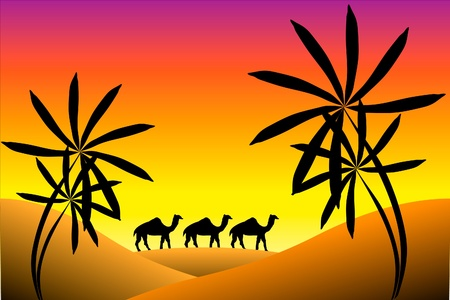 bedouin: Sunset in desert with palms and camels Illustration