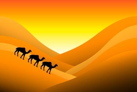 Sunset in desert with camels Illustration