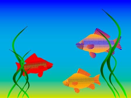 El mundo submarino - peces y algas.  Ilustración de vector