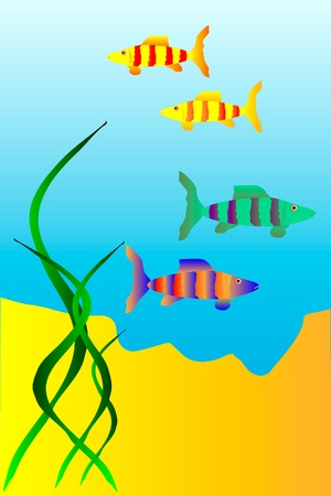 exoticism saltwater fish: The underwater world of  fish - vector