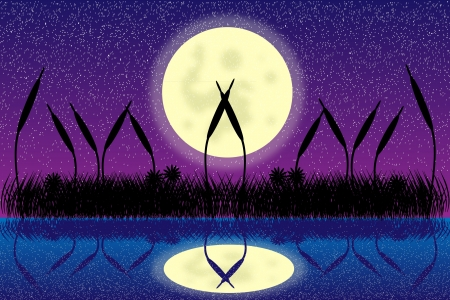 Illustration of lake night scene with grass silhouette Vector