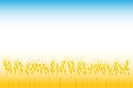Ripe yellow wheat ears on a floor, agricultural illustration Stock Vector - 10228790