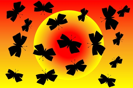 Butterflies silhouette at sunset background - vector Stock Vector - 10228773