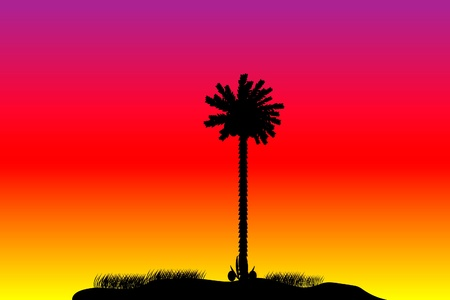 Silhouette of a tropical island on sunset background Stock Vector - 10253865
