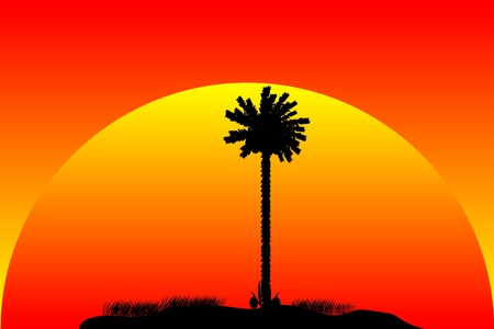 Silhouette of a tropical island on sunset background Stock Vector - 10253862