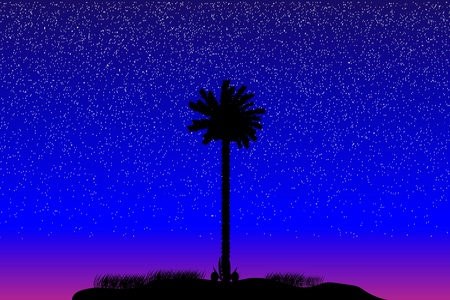 Silhouette of a tropical island at night - vector Stock Vector - 10253875