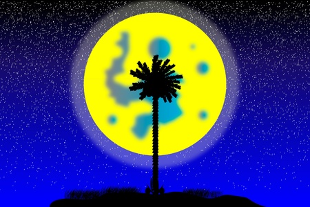 Silhouette of a tropical island at night - vector Stock Vector - 10253880