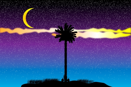 Silhouette of a tropical island at night - vector Stock Vector - 10253881