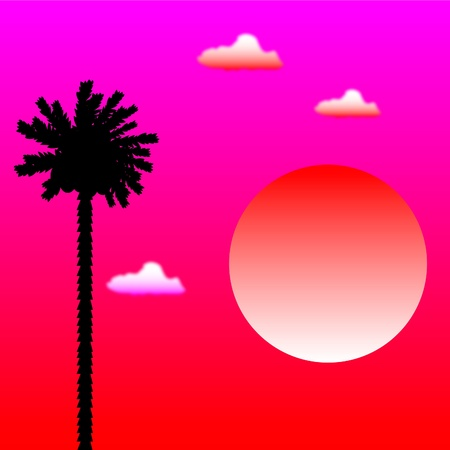 Tropical sunset and palm tree Stock Vector - 10264684