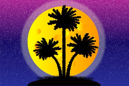 Illustration of a silhouette of a palm trees at night Vector