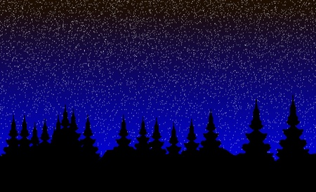 Landscape, night forest.