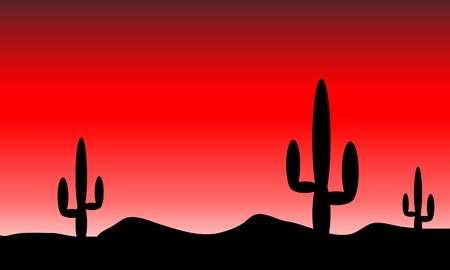 Mexico desert with cactus plants. Evening. Vector