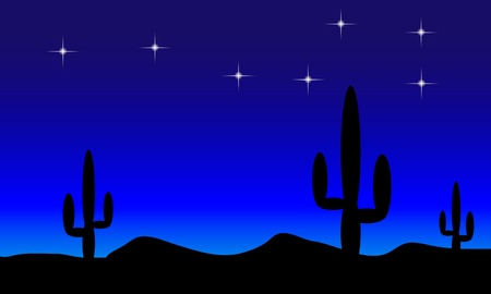 Mexico desert with cactus plants at night - vectot.