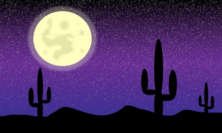 Mexico desert with cactus plants at night - vectot. Vector