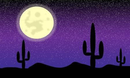 Mexico woestijn met cactussen 's nachts - vectot. Stock Illustratie
